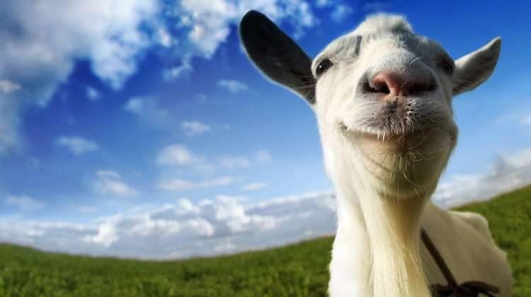 Goat mmo simulator v1. 3. 3 скачать андроид игру бесплатно.